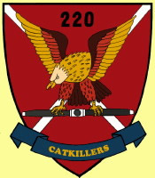 Intermittent Catkillers Patch, 220th Avn Co, 1969-71