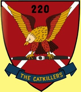 The Catkillers Patch, 220th Avn Co